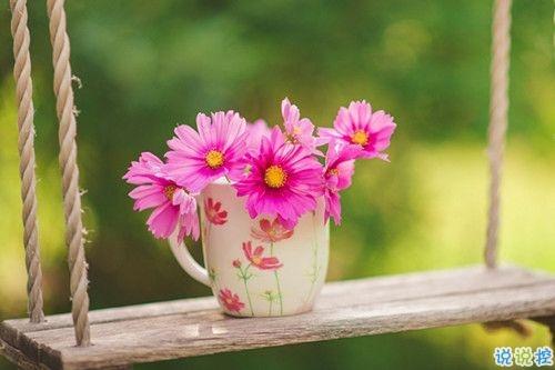 春天赏花的诗句唯美动听 春天赏花踏青诗句合集