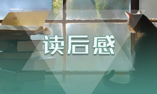 《北京的春节》800字读后感