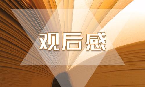 电视剧北京青年观后感,电视剧北京青年观后感