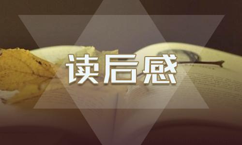 《北京的春节》读后感300字